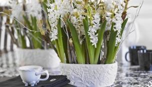 Stylová květinová harmonie