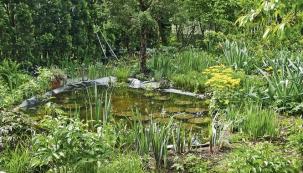 Zahrada ve vodním úžasu