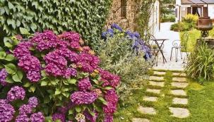 Pevnými kroky k ideální zahradě