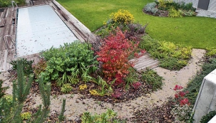 Zahrada pro efekt i užitek