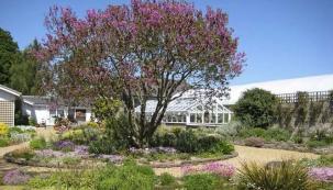 Zahrada v nejsušší části Anglie v Essexu