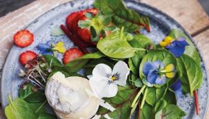 Svěží salát s jahodami