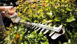 Jak si nejlépe vybrat plotové nůžky