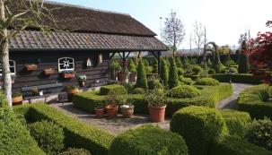 Elegantní krásu buxusů vdobě vegetace doplňují rostliny pěstované vnádobách. Ty jsou pozahradě rozmístěné tak, aby podtrhovaly romantickou náladu celé zahrady.