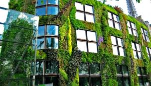 Vertikální zahrady Patricka Blanca krášlí mnoho staveb v Paříži. Jím patentovaná zelená stěna je využitelná na mnoho způsobů...