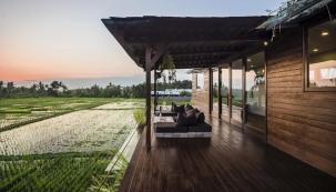 Z terasy můžete vstoupit do rýžového pole.