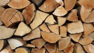 Dřevo jako obnovitelný zdroj energie je šetrné k životnímu prostředí.