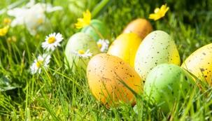 Žluté velikonoce: v barvě svěží trávy nebo žloutkově žlutém tónu bude prostřený stůl čišet energií a radostí.