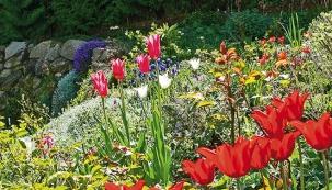 Měli byste se vždy snažit o to, abyste ze své zahrady měli co nejsilnější estetický zážitek a cítili se v ní opravdu dobře. Již při pohledu z okna by vás měla lákat ven a vzbuzovat ve vás ty nejpříjemnější pocity.