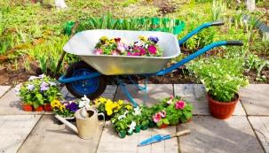 Magnólie, sasanky, narcisy, rozkvetlé květináče a jiné nádoby a také vysazování stormů, keřů a trvalek - tím vším se můžete v zahradě zabavit v dubnu.