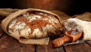 Výstavu Nejen chlebem živ je člověk aneb z obilného pole na náš stůl je možné navštívit v botanické zahradě v pražské Troji od 16. dubna do 1. května.