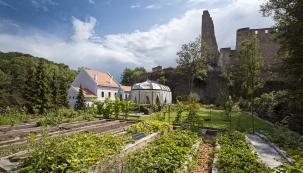 Historie mlýna sahá až do15. století. Vždy byla silně provázaná isosudem hradu, postaveného kolem roku 1359 pro bohatého měšťana ze Starého Města pražského, Františka Rokycanského, ato namístě hradu z2. poloviny 13. století.
