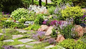 Jistě to také znáte – na některých místech zahrady prostě tráva neporoste, ani kdybyste jí žárovkou svítili a denně ji rosili. Naštěstí existují rostliny, které mohou trávu nahradit. S jejich výběrem radí naše průvodkyně ekozahradami.