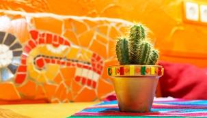 Mexický styl si libuje ve výrazných barvách, které se nejčastěji objevují na stěnách. Oblíbené jsou kombinace zemité barvy hořčice, terakoty a khaki, které se kombinují s odstíny pouště a barvou borovic, ale také červená s modrou nebo dva sytější odstíny jedné barvy.