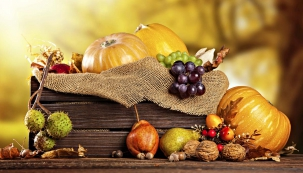 Turek, tykve, tykvičky, okurky, patisony, cukety arůzné dýně bývaly především ozdobou vesnických kompostů aplotů. Napodzim se zavařily nebo se znich upekl dýňový koláč. Postupem času je objevili aranžéři, květináři ašlechtitelé azačali používat drobné, různě bradavičnaté nebo pruhované plody jako působivou dekoraci. Ze zeleniny se stává kromě jiného ihračka pro děti idospělé, která dokonale zpestří dlouhé podzimní dny.