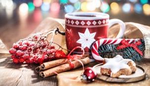 Výběr z tisíce dárků pod jednou střechou na vás čeká na největším předvánočním veletrhu, který se uskuteční už tomto víkendu v PVA EXPO PRAHA v Letňanech. Součástí Stříbrných vánočních dní bude i projekt Pomáháme dětem o Vánocích.
