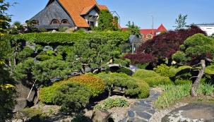 Projekt nazvaný 100 borovic je opravdovým unikátem. Lze jej spatřit vmuzeu bonsají ve Starém Městě uUherského Hradiště.