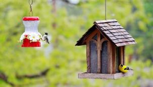 Dvojice krmítek: Vysoké krmítko vpravo je pro suchou stravu, zatímco vlevo je pítko sloužící k osvěžení opeřenců. Květinová výzdoba má ptáčkům připomínat, že zima brzo skončí a na jaře a v létě bude zas dobře.