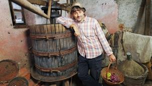 Vinařův rok: Hrozny z vlastní zahrádky
