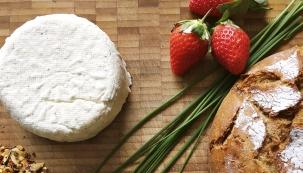 Poté, co jsme se naučili péct domácí chléb, vařit šunku či paštiku, přichází nový trend, a to výroba domácích sýrů. Nejde o žádné náročné výrobní procesy, u kterých byste strávili celé mládí. Výroba je rychlá a nenáročná, stačí jen držet se osvědčených postupů.