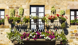 Na osázení terasy nebo balkonu je nejvyšší čas. O tom, že největší parádu udělají květiny, není pochyb. Už máte vybrané a nakoupené květináče?
