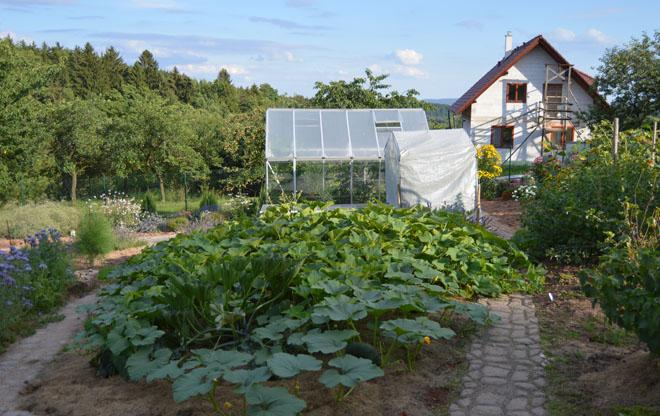 Projekt č. 27: Kompletní rekonstrukce zahrady – Veronika Brádlová Rybová: S manželem jsme postavili skleník s pařníkem, na pařník jsme si vyrobili okna z polykarbonátu, i rám jsme si svařili sami. Kompost je postavený ze ztraceného bednění. Chodníčky jsem vytvořila z betonu pomocí formy. Mezi trávníkem a chodníčky jsou založené záhony z drobného ovoce (maliny, ostružiny, rybíz, josta). Podél pravé strany trávníku je pruh z růží prostřídaný tulipány, aby tu něco kvetlo jak v létě, tak hned z jara. Sušák a dřevěný kryt na studnu vyrobil manžel. Terasu i se schody jsme si stavěli také sami.