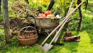 Jak pečovat o stromy a záhony s příchodem chladných dnů, jak zalévat, do kdy vysazovat a pěstovat zeleninu, jak před zimou ošetřit trvalky a jak připravit celou zahradu na zimu - to budou témata naší záříjové PORADNY. Své dotazy zasílejte na adresu poradna@dumabyt.cz do 15.8. Předáme je odborníkům a zodpovíme během září. Ze všech došlých dotazů vylosujeme tři, jejichž autoři získají roční předplatné časopisu Rodinný dům.