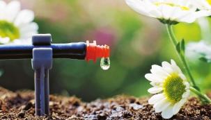 Vedle dotačních programů na vytápění a zateplení máte možnost požádat o dotaci v oblasti hospodaření s vodou a využití dešťové vody v domácnosti.