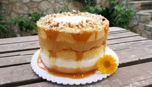 Pokud si rádi hrajete a pečete pro své blízké u příležitosti narozenin, promocí i prachobyčejných nedělí s velkou chutí koláče, dorty a jiné zákusky, doporučujeme vyzkoušet dnešní recept na vanilkový dort s jablky dušenými v cideru, se smetanovým krémem, ořechy a karamelem. Každý, kdo ho ochutná, na něj bude s láskou dlouho vzpomínat. (Foto: Ivana Křížová)