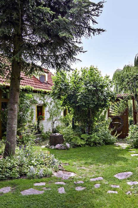 V přírodní zahradě nejstenikdy sami. Čím rozmanitější prostředí vytvoříte, tím pestřejší život se v ní bude odehrávat.