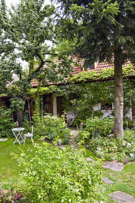 Zelené vertikály tvořené stromy apopínavými rostlinami dávají zahradě třetí rozměr a opticky ji zvětšují.