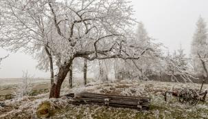 Říká se: únor bílý, pole sílí! Sníh působí napovrchu jako peřinka apůda nepromrzá. Nicméně slaměný mulč, štěpka nebo odleželý slamnatý hnůj bývají často lepší pokrývkou než sníh, protože vydrží déle, potlačí plevel apohnojí.