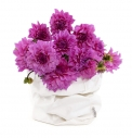 V jejím stylu: Papírový sáček na květiny nebo na drobné domácí potřeby, na výběr mnoho barev, 12 x 12 x 25 cm, www.uashmama.sk