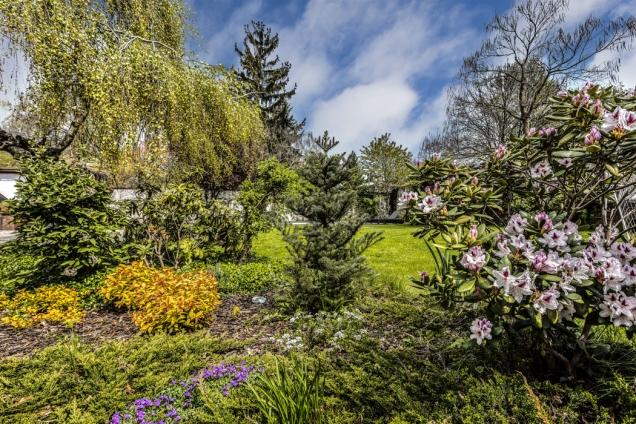 Vzrostlé stromy, vysoké inízké dřeviny spolu skvetoucími keři atrvalkami tvoří celek zahrady, který působí svěže apřirozeně.
