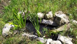 Stejná vana orok později. Mezi kameny  naokraji jsou nasázené trsovité bylinky, doporučuji pro snadnou údržbu ladit výsadbu tak, aby se nemuselo okolí vany vůbec sekat sekačkou.