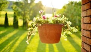 Nelitujte času a udělejte si před výletem do zahradnictví plánek, kde si přesně načrtnete rozmístění květináčů a truhlíků, předběžný výběr druhů rostlin a jejich počet.