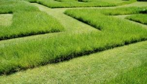 Se zahradním oživením barev po dlouhé zimě souvisejí také úpravy trávníku. Jakmile se zbaví sněhu a osuší ho první jarní paprsky, je třeba začít s regenerací.