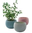 5. Trio samozavlažovacích květináčů Cozies, plast, háčkovaná vazba, Ø 15,5cm, výška 10,5cm, Keter, cena 323Kč, www.kamody.cz