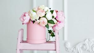 Doba, kdy se růžová barva objevovala pouze v pokojích pro malé i větší slečny, je nenávratně pryč. Svěží a nevinná světle růžová barva se zabydlela i v obývacích pokojích a ložnicích, kam vnese jemnost. Skvěle si rozumí s bílou a se dřevem.