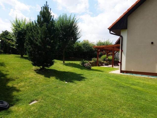 Regenerace trávníku po dvou týdnech od vertikutace (Zdroj: HECHT)