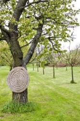 Původní stromy v ovocném sadu nechávají Jarošovi dožít a postupně je doplňují novými odrůdami. Úroda bude o to bohatší.