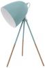 Stolní lampa Eglo Dundee, možnost natáčení, ocel, výška 44 cm, cena 939 Kč, www.hornbach.cz