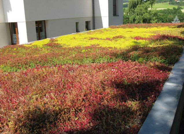 Příklad zelené střechy (Zdroj: ISOVER)