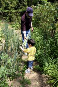 Už v raném mládí si můžeme spolu s rodiči a prarodiči vyzkoušet, jak pěstovat zeleninu na vlastní zahrádce.