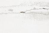 Zda se trhliny či praskliny vomítce rozšiřují, zjistíte tak, že je na několika místech přelepíte např. malířskou páskou. Pokud se páska přetrhá, chystejte materiál, štafle anářadí...