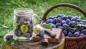 Dlouhodobě uchovat úrodu bohatou na vitaminy achutě lze různými způsoby. Záleží na tom, co vám chutná ajak chcete konzervované potraviny dále využít.