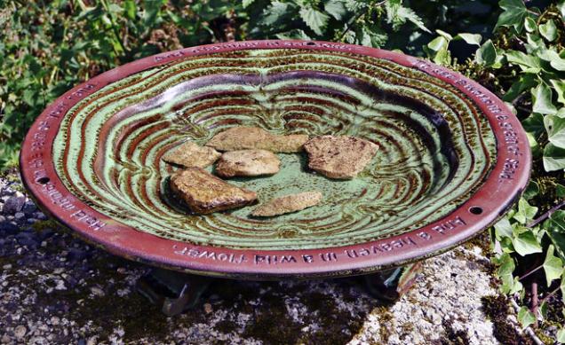 Zahradní pítko by mělo mít strukturu a pomalu se svažovat, aby v něm zbytečně netonul ani ten nejmenší hmyz.
