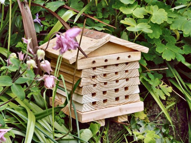 Domeček s rovnými dutinkami se stane domovem pro včelky samotářky. Je to velmi pozoruhodný hmyz, kterého je několik zajímavých druhů.