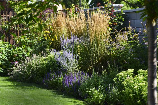 Trvalkový záhon upoutá pozornost svou dynamičností během roku. Na jaře zde rozkvetou cibuloviny, v létě tu vládnou trvalky a na podzim či v zimě zaujmou dominantní pozici okrasné trávy.