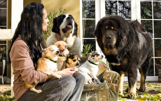 Kateřina Čtvrtníčková se dlouhodobě zabývá problematikou týrání zvířat. Byt vyměnila za dům se zahradou, kde může zachráněným pejskům nabídnout svobodnější život. Na předloktí ji symbolicky zdobí vytetované psí tlapky.